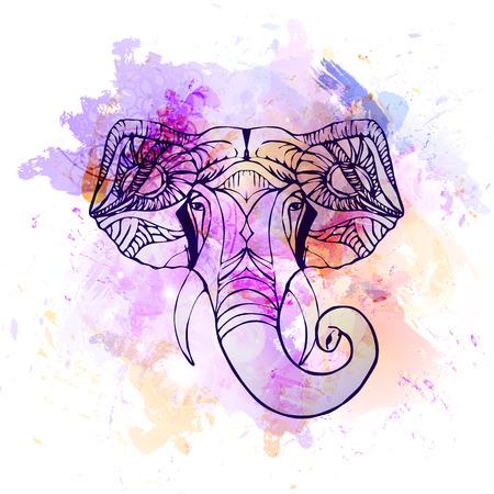 east indian: Hand drawn Elephant Head. Indian god Lord hindu deity Ganesha. Illustration