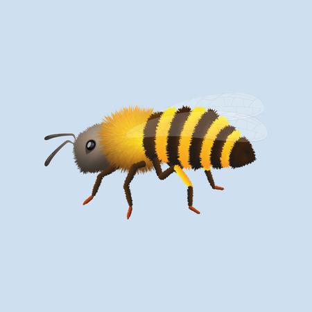fluffy bee Ilustrace