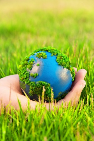 environment protection: Hands and Earth