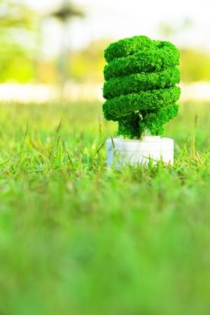 Eco energy concept Stock Photo - 11605263
