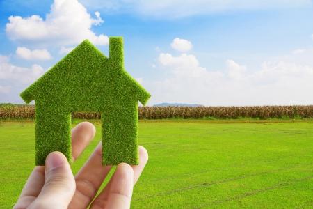 Eco House-Konzept Standard-Bild