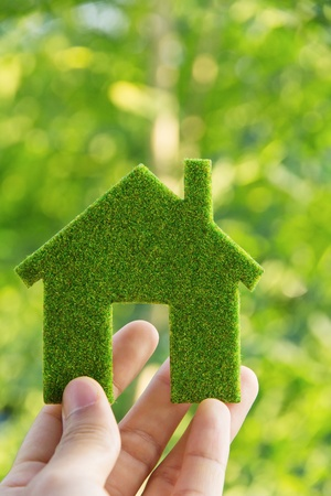 eco energy: hand holding eco house icon concept