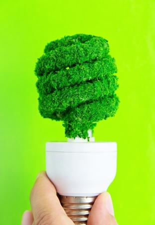 save electricity:  eco light bulb