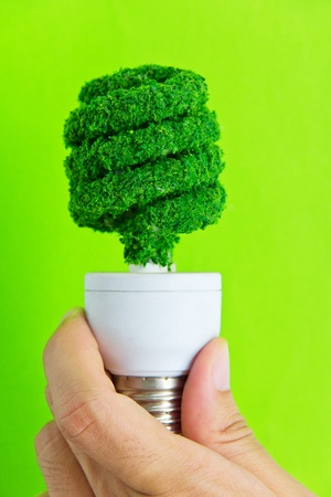 hand holding eco light bulb energy concept Stock Photo - 12880347