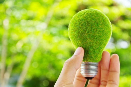 green light: hand holding eco light bulb energy concept Stock Photo