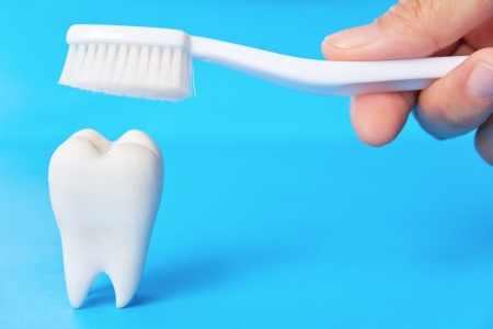 dental concept Stock Photo - 13837714