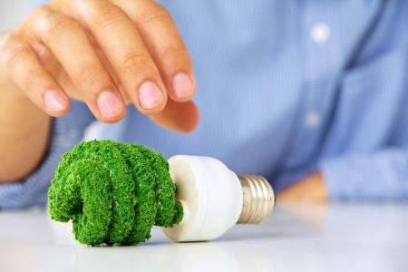 eco light bulb ,save energy concept photo