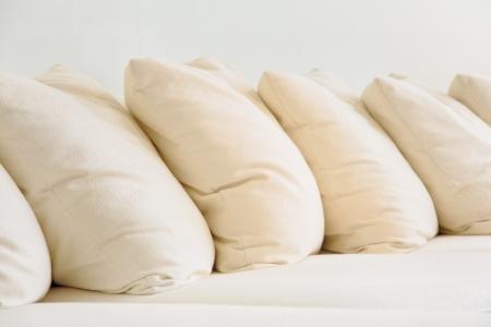 settee: Soft cushion