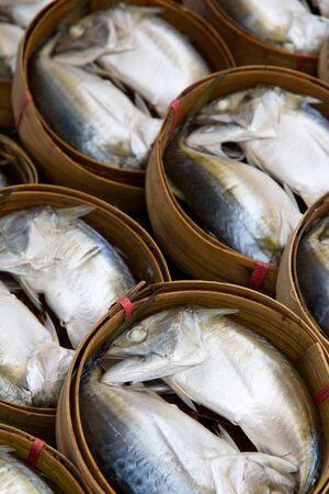 close up of mackerel fish Stock Photo - 15897931