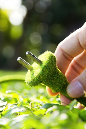 environmentally friendly: Hand holding eco electric plug
