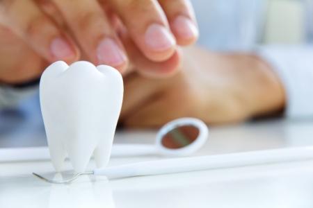 dentist holding molar,dental concept Stock Photo - 17115606