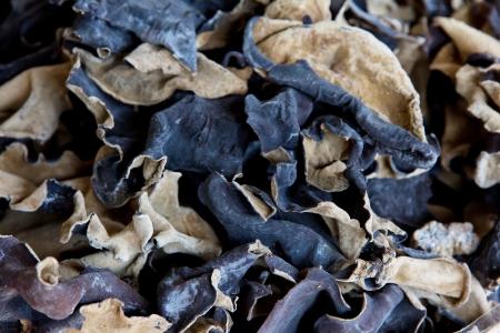 cloud ear fungus: organic jew s-ear ,dried mushrooms