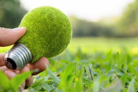 hand holding eco light bulb, save energy concept photo