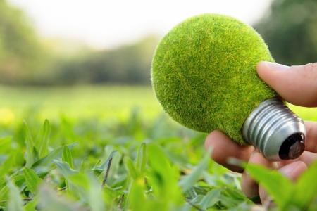 strony gospodarstwa żarówka eko