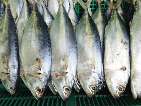 Mackerel fish background photo