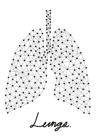 abstract of lungs line  向量圖像