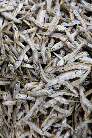 Dried fish  photo