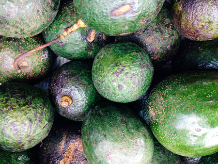 fresh avocados in the market.