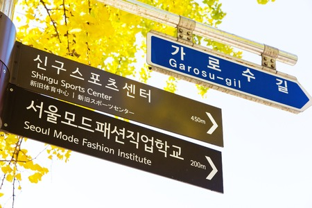 hugely: Garosugil Street Sign, Garosugil is a trendy tree-lined street with plenty of cafes, bars, restaurants and shops. Hugely popular with fashion aficionados and even celebrities.