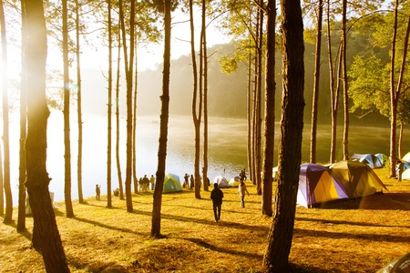 pang: Pang Tong Under Royal Forest Park ( Pang ung ) at Mae Hong Son Province,Thailand.  Pang Ung is a popular place to stay in a camping in the winter.