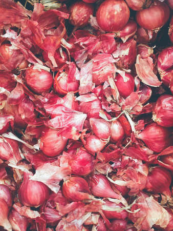 shallot: Shallot ,asia red onion.