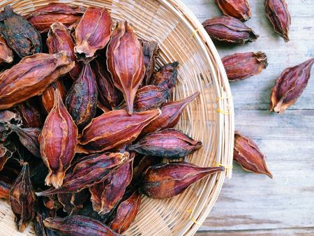 Gedroogd Gardenia Fruit, als de kruiden in de behandeling van de Chinese geneeskunde.