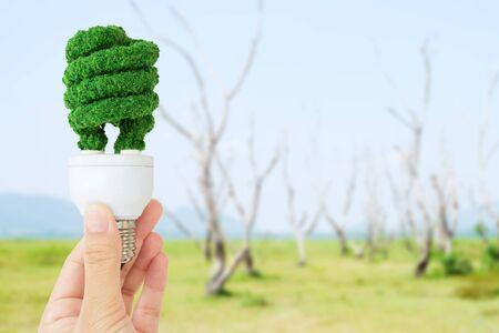 overuse: hand holding eco light bulb energy concept Stock Photo