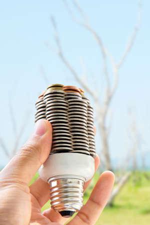manos entrelazadas: hand holding coin light bulb,energy concept