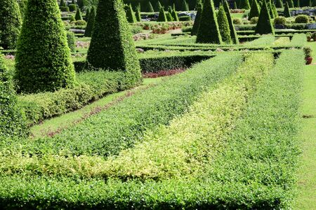 formal garden: English Formal Garden Stock Photo