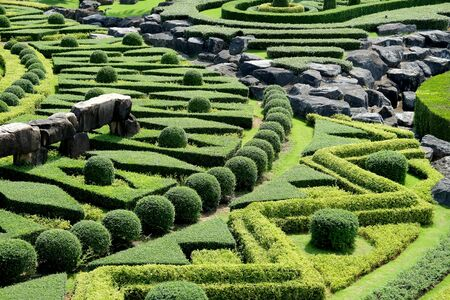 ornamental garden: Garden path with topiary landscape Stock Photo