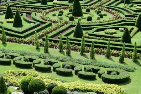 topiary: Topiary in an English Formal Garden