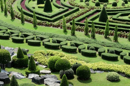topiary: Garden path with topiary landscape background