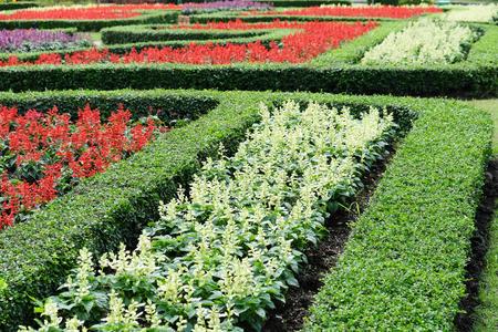 flower garden path: Garden path with topiary landscape,English Formal Garden