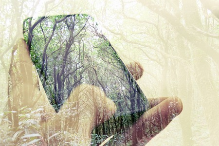 wireless telephone: concept image of Digital composite using cell phone in forest Stock Photo