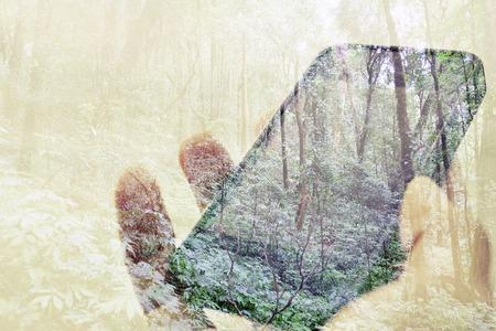 arbol de problemas: concept image of Digital composite using cell phone in forest Foto de archivo