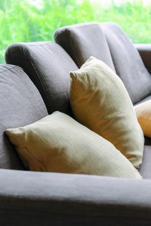 Cushion on sofa, Living Room Detail