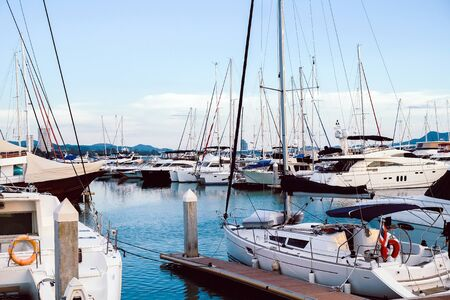 Luxury yachts docked in marina.