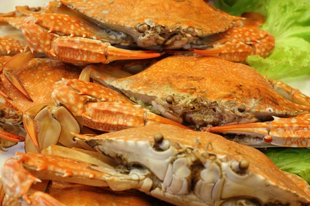 fishery products: Boiled crab In the local restaurant