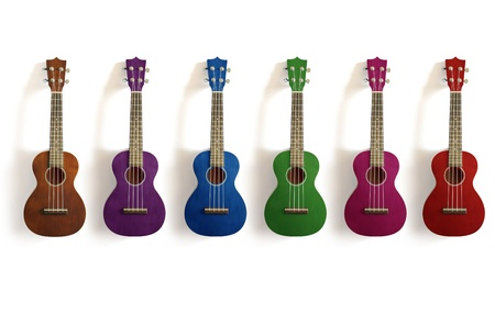 tune: ukulele on white isolated