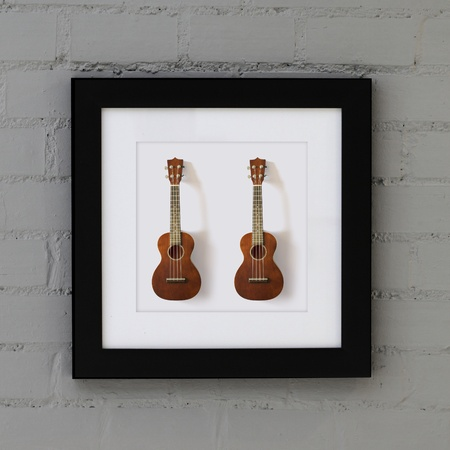 ukulele in frame on the wall photo