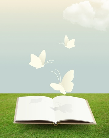 community garden: open book on grass with butterfly paper cut style Stock Photo