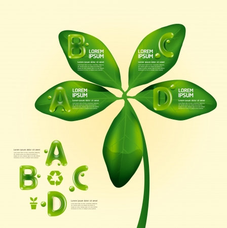 infographic water drop on leaf nature concept   graphic or website layout  Horizontal Vector