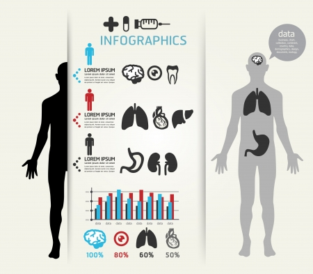 organ: Medical Infographic Design template  can be used for infographics  horizontal cutout lines  graphic or website layout vector  Illustration