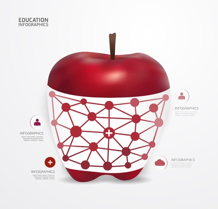 education choice: Modern Design apple dot Minimal style infographic template  can be used for infographics  numbered banners  horizontal cutout lines  graphic or website layout vector