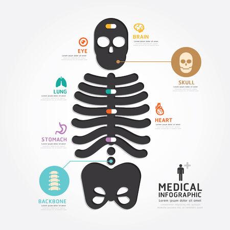 infographics medical skull bone design diagram line style template Vector