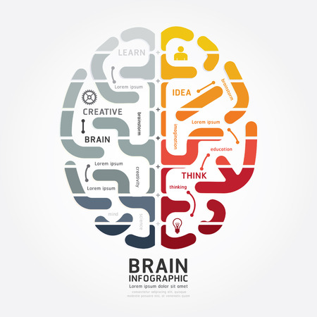educación: plantilla infografía vector cerebro diagrama diseño de la línea de estilo de color blanco y negro