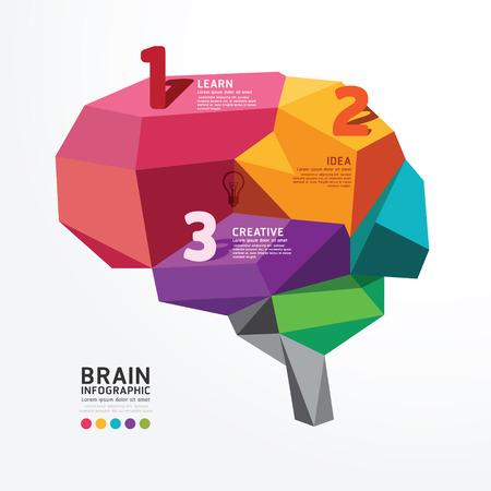 芸術的: ベクトル インフォ グラフィック脳設計概念ポリゴン スタイル、抽象的なベクトル イラスト  イラスト・ベクター素材