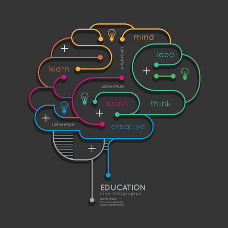 innovation: Appartement lin�aire Infographie �ducation Concept.Vector Outline Brain Illustration. Illustration