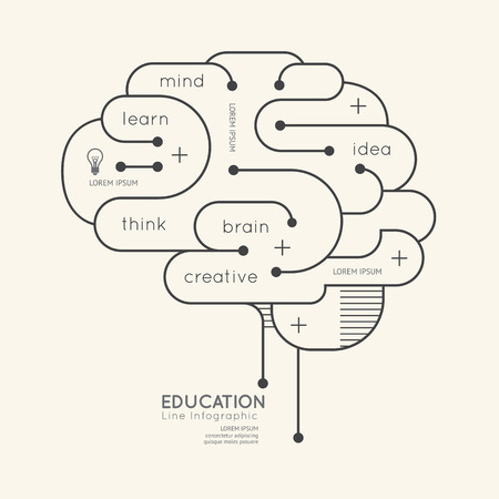 평면 선형 인포 그래픽 교육 개요 뇌 개념입니다 그림. 일러스트
