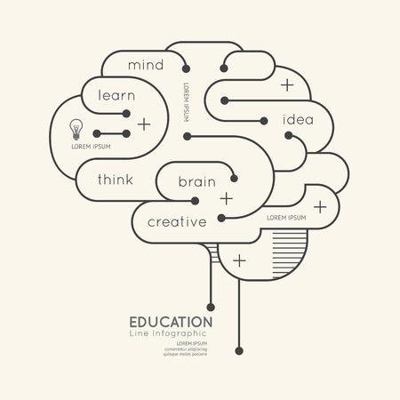 thinking brain: Flat linear Infographic Education Outline Brain Concept.Vector Illustration. Illustration